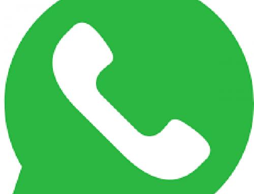 Qué es WhatsApp Business y cómo funciona